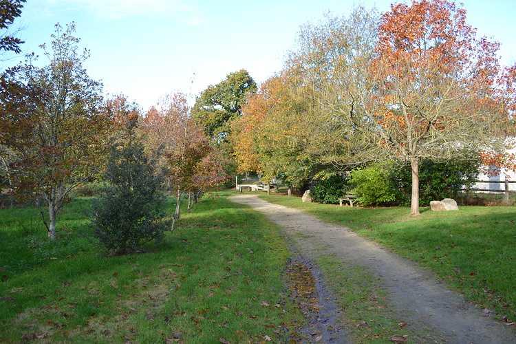 Arboretum de Carnivet dsc0310