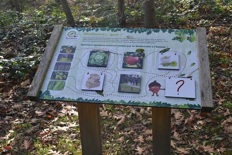 Arboretum de Carnivet dsc0312