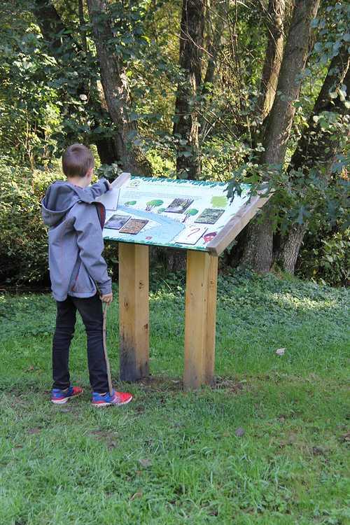 Arboretum de Carnivet img8860